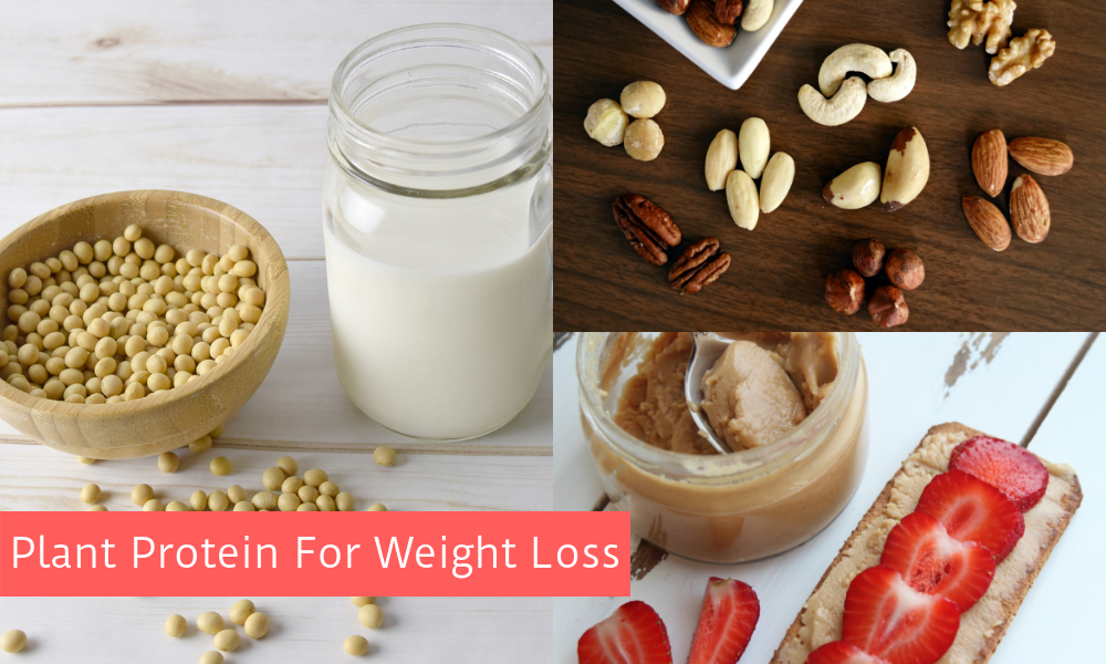 Plant Protein for Weight Loss